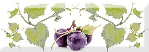Decor Grapes 03 10x30