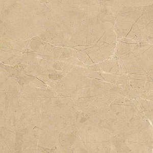 Select Beige 30*30